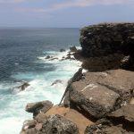 Galapagos14