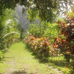Marquesas   Nuku Hiva   Anse Hakatea - 084