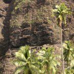 Marquesas   Nuku Hiva   Anse Hakatea - 095