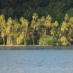 Islas Sociedad | Tahaa - 129