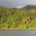 Islas Sociedad | Tahaa - 169