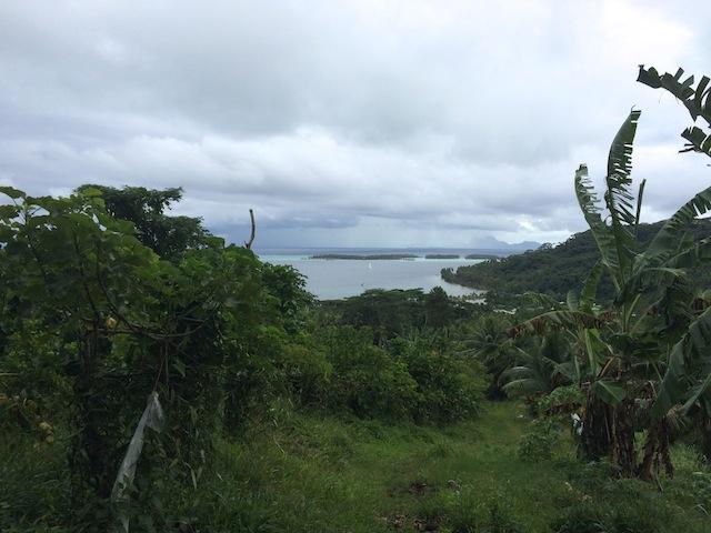 08_Polynesia Francesa | Taaha