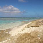 Tonga | Vavau Group | Maninita - 058