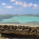 Tonga | Vavau Group | Maninita - 059