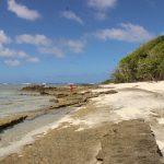 Tonga | Vavau Group | Maninita - 075
