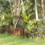 Fiji Islands | Rotuma - 044