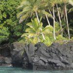 Fiji Islands | Rotuma - 233