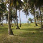 Fiji | Rotuma - 082