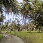 Fiji | Rotuma - 174