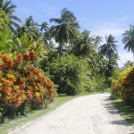 Fiji | Rotuma - 348