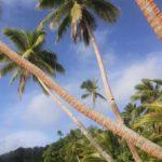 Fiji | Rabi | Daniels Cove - 04
