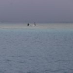 Fiji | Rabi | Daniels Cove - 35