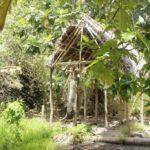 Fiji | Rabi | Daniels Cove - 47