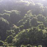 Fiji | Rabi | Daniels Cove - 60