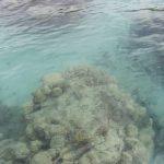 Fiji | Viani Bay - 31