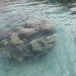 Fiji | Viani Bay - 34