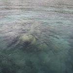 Fiji | Viani Bay - 37