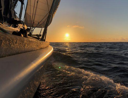 En el infinito del mar