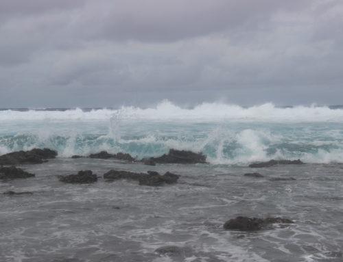 En el temporal
